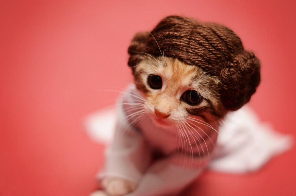 Принцесса Из Star Wars
