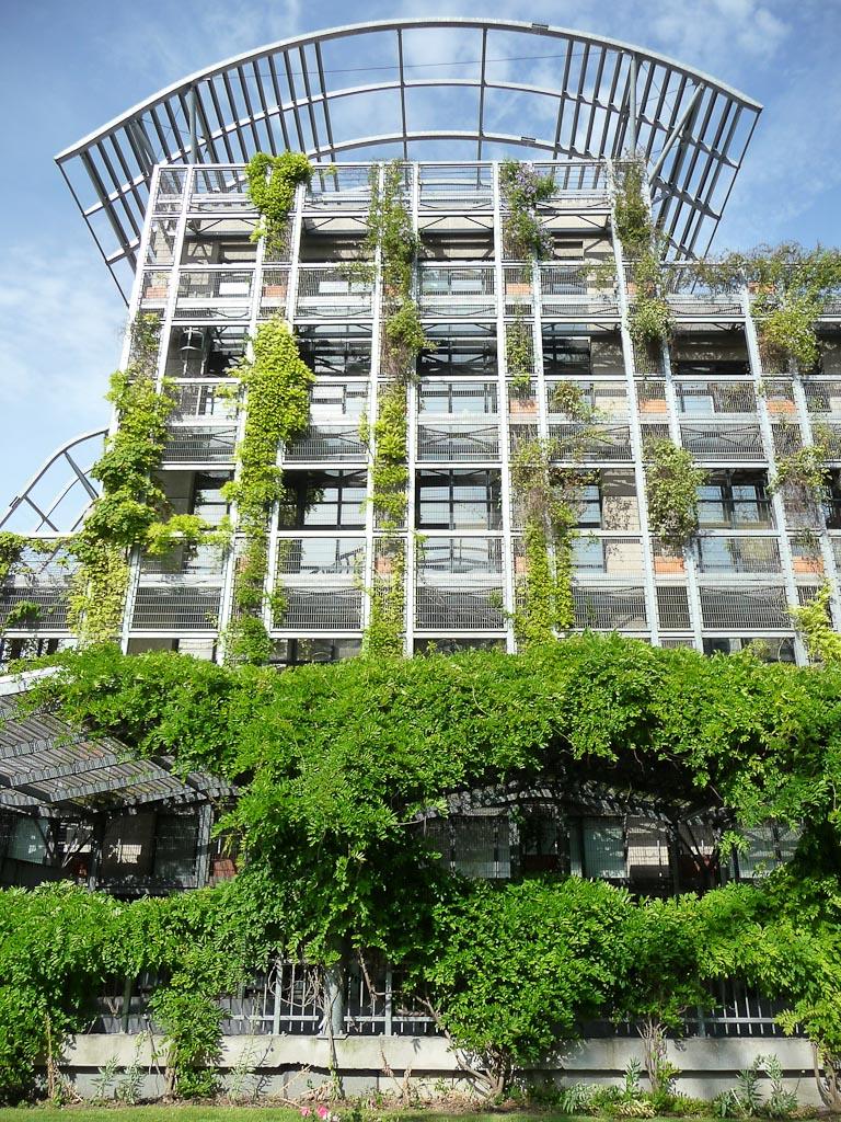 Самый глобальный пример клематиса - Биопарк в Париже