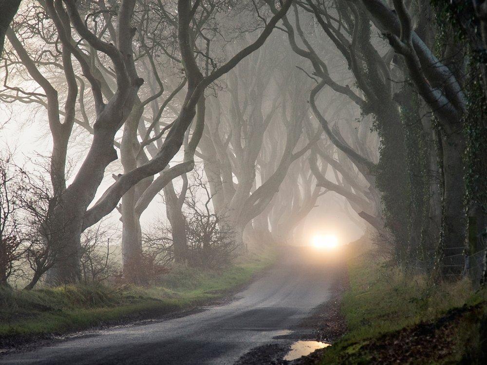 Таинственный Темный Тупик в Ирландии