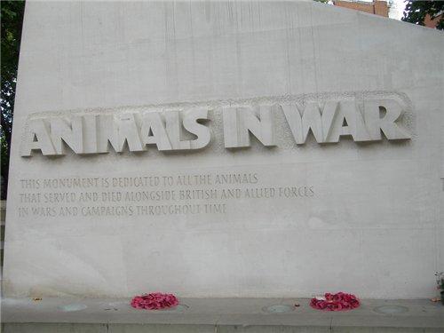 мемориал животным в Лондоне